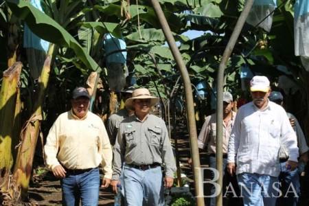 MINISTRO DE AGRICULTURA DE GUATEMALA VISITA OPERACIONES DE BANASA